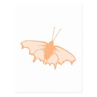 Orange Butterfly. Post Card