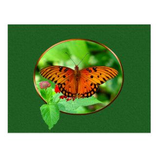 Orange Butterfly Postcard 5