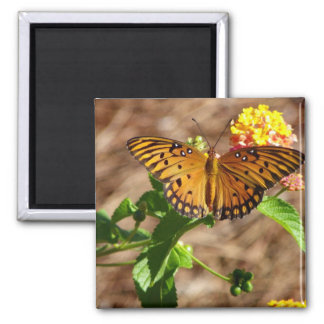 Orange Butterfly Square Magnet
