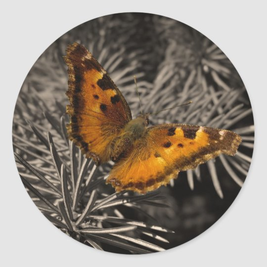 Orange Butterfly Stickers