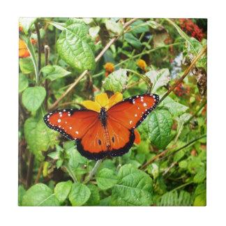 Orange Butterfly Ceramic Tiles