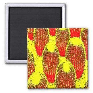 Orange Cacti Refrigerator Magnet