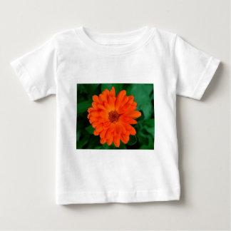 Orange Calendula Marigold Design Baby T-Shirt