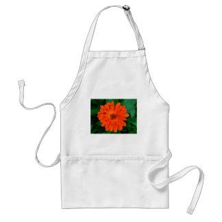 Orange Calendula Marigold Design Standard Apron