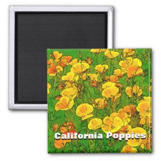 Orange California Poppies Square Magnet