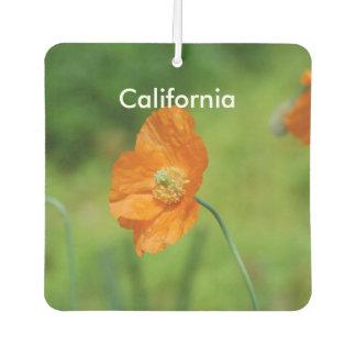 Orange California Poppy
