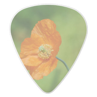 Orange California Poppy White Delrin Guitar Pick