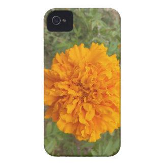 Orange Carnation Blackberry Bold case