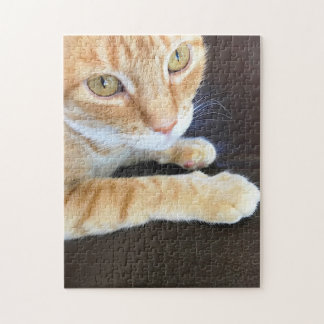Orange cat closeup jigsaw puzzle
