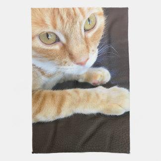 Orange cat closeup tea towel