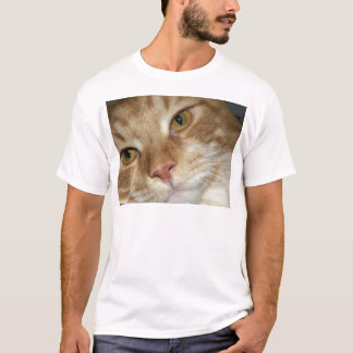 Orange Cat Eyes T-Shirt