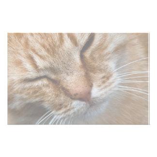 Orange cat face stationery design