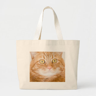 Orange cat large tote bag