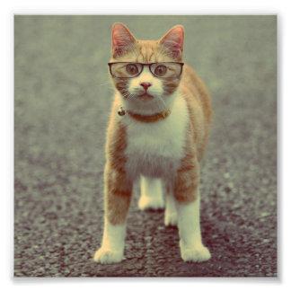 Orange cat with glasses photo print