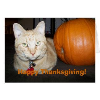 Orange Cat With Pumpkin Happy Thanksgiving Card