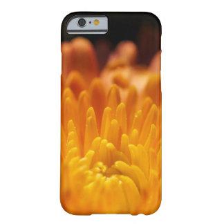Orange Chrysanthemum Flower iPhone Smartphone Case