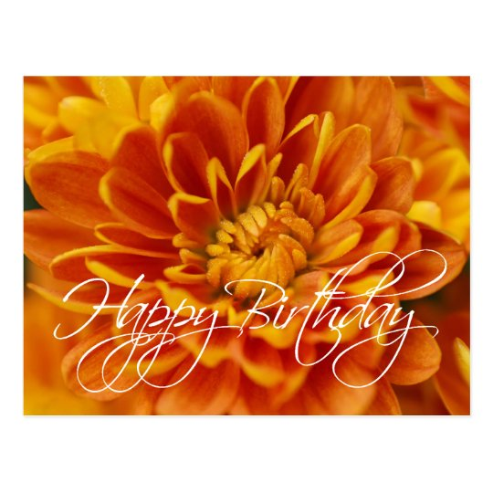 Orange Chrysanthemum Happy Birthday Postcard