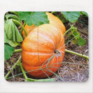 Orange Cinderella Pumpkin Mouse Mat