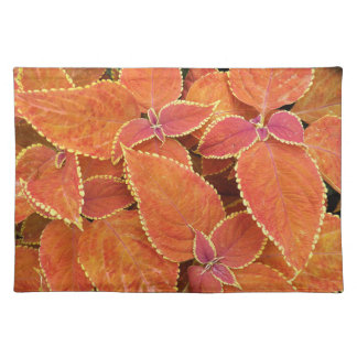 Orange Coleus Leaves Floral Cloth Placemat