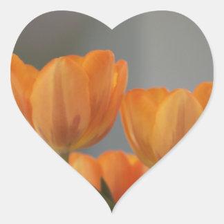Orange Cream Tulips, heart shape sticker