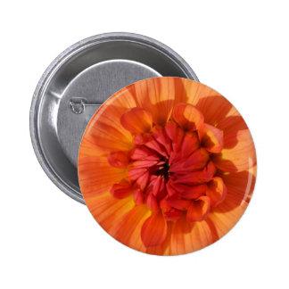 orange dahlia 6 cm round badge