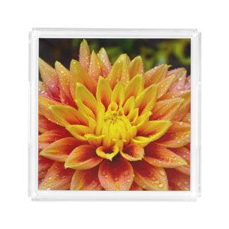 Orange dahlia acrylic tray