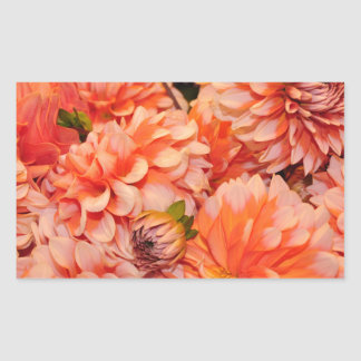 Orange dahlia flowers rectangular sticker