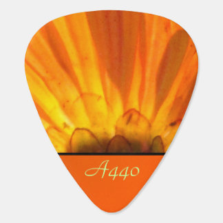 Orange Daisy Flower Guitar Pick