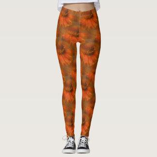 Orange Daisy Flower Nature Art Pattern Leggings