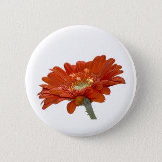Orange Daisy Gerbera Flower 6 Cm Round Badge
