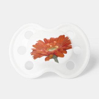 Orange Daisy Gerbera Flower Dummy