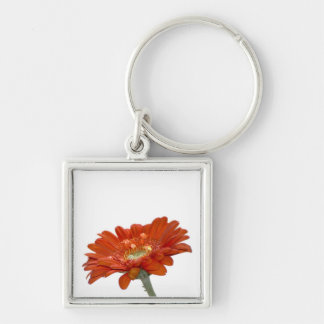 Orange Daisy Gerbera Flower Silver-Colored Square Key Ring