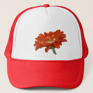 Orange Daisy Gerbera Flower Trucker Hat