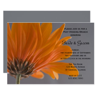 Orange Daisy Gray Post Wedding Brunch Invitation