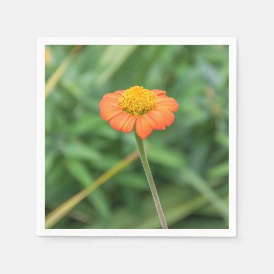 Orange daisy paper napkins