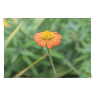 Orange daisy placemat