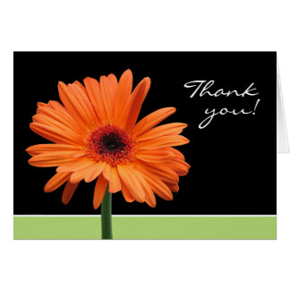 Orange Daisy Thank You Card