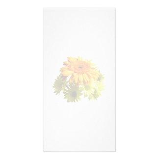 Orange Daisy With Yellow Mums Customized Photo Card
