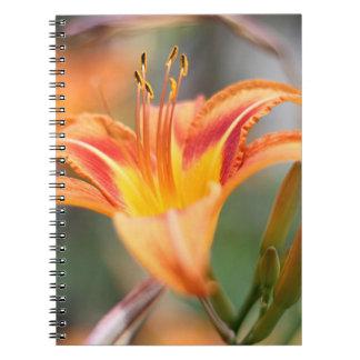 Orange day lily notebook