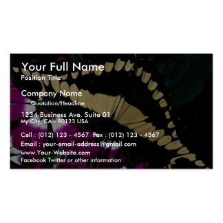 Orange dog Central America Business Card Template