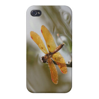 Orange Dragonfly iPhone4 case Covers For iPhone 4