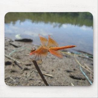 Orange Dragonfly Mouse Mat