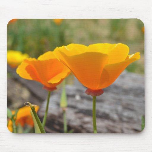 Orange Elegance Mouse Pad