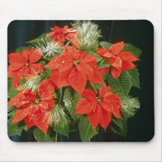 Orange Euphorbia Pulcherrima 'Dark Red' (Poinsetti Mouse Mat