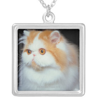 Orange Eyed and Cute Cat Silver Plated Necklace