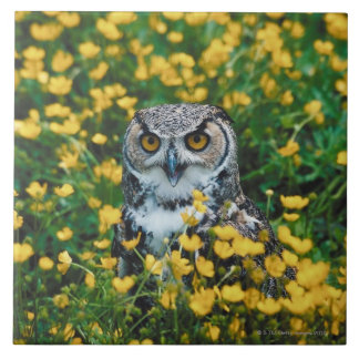 Orange Eyed Owl in Meadow of Flowers Large Square Tile