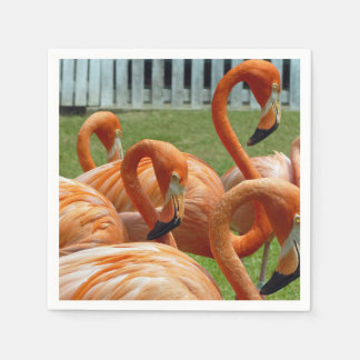 Orange flamingos paper napkin