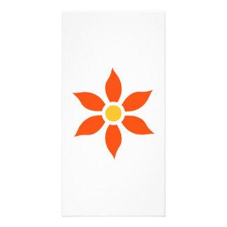 Orange flower bloom photo cards