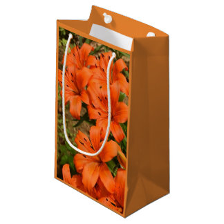 Orange Flower Gift Bag