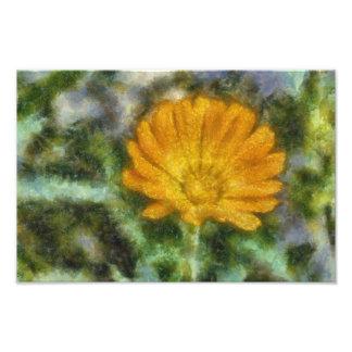 Orange flower painting photo